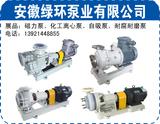 安徽绿环泵业1.jpg